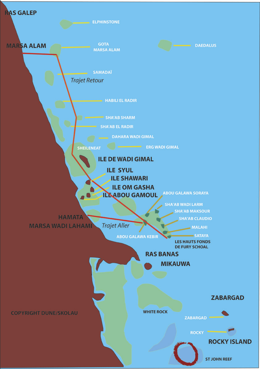 mer rouge chat sites Liste des espèces sous marine observées par les plongeur de plongée loisir dans : mer adriatique carnet de plongée:  etoile de mer rouge.
